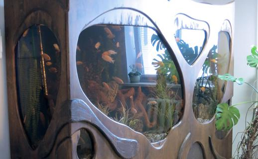 finish-solid-wood-quarium-2