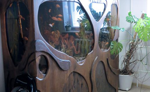finish-solid-wood-quarium-3