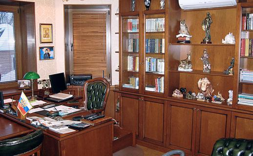 interior of the cabinet, wood finish 3